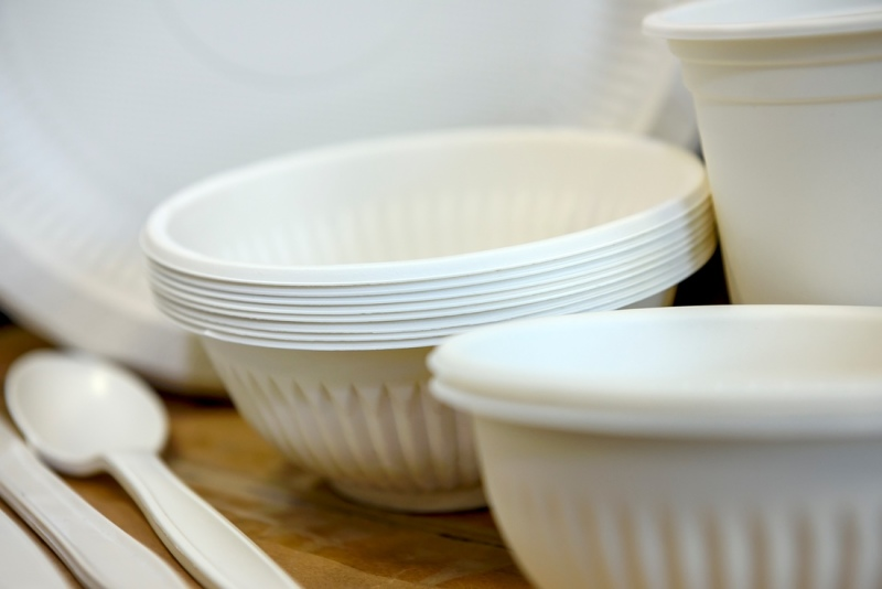 Biodegradable disposable dishes